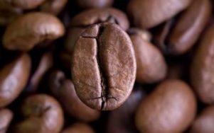 Кофе зерно жаренный от производителя