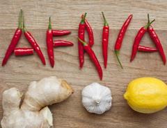 Южноафриканская кухня