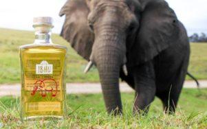 Южноафриканский джин приправленный навозом слона