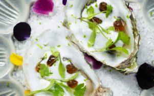 Вдохновляющие блюда Кике Дакоста