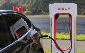 Товарный знак Tesla Files для ресторанных услуг